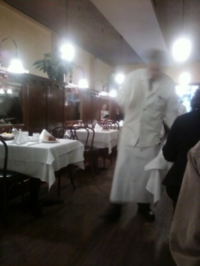 Waiter in White lapcoat and long apron