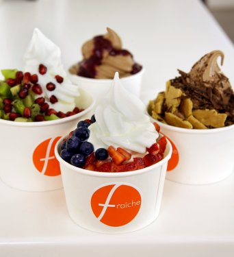 yogurt and yogurt picture from fricheyogurt.com