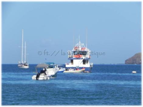Mapache Boat Tour