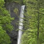 wahkeena falls 02