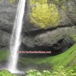 wahkeena falls 07